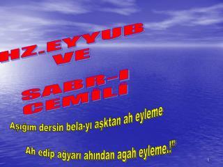 HZ.EYYUB  VE   SABR-I  CEMİLİ