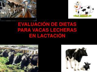 EVALUACIÓN DE DIETAS PARA VACAS LECHERAS EN LACTACIÓN