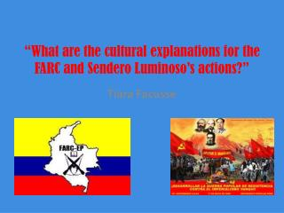 """What are the  cultural explanations  for the FARC and  Sendero Luminoso's  actions?"""