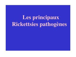 Les principaux Rickettsies pathog�nes