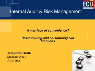 Internal Audit  Risk Management