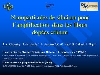 Nanoparticules de silicium pour l'amplification  dans les fibres dopées erbium