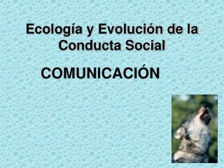 Ecología y Evolución de la Conducta Social