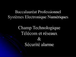 Baccalauréat Professionnel Systèmes Electronique Numériques