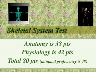 Skeletal System Test
