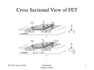 Cross Sectional View of FET