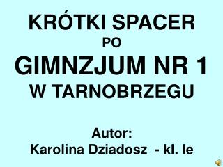 KRÓTKI SPACER PO GIMNZJUM NR 1  W TARNOBRZEGU Autor:  Karolina Dziadosz  - kl. Ie