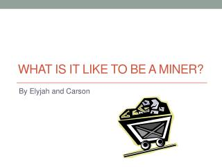 What is it like to be a miner?