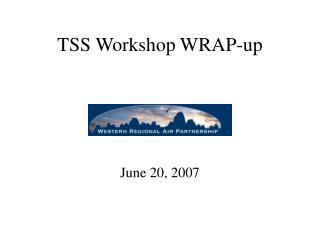 TSS Workshop WRAP-up