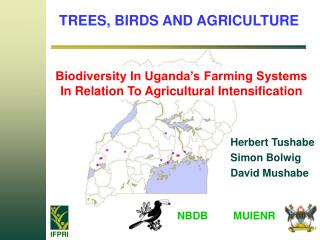 TREES, BIRDS AND AGRICULTURE