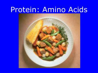 Protein: Amino Acids