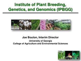 Institute of Plant Breeding, Genetics, and Genomics (IPBGG)