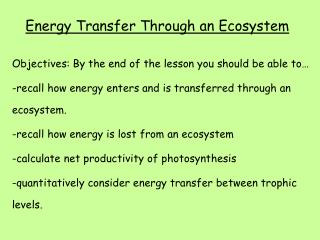 Energy Transfer Through an Ecosystem