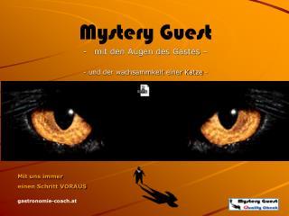 Mystery Guest mit den Augen des Gastes – - und der wachsammkeit einer Katze -
