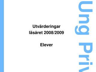 Utvärderingar läsåret 2008/2009 Elever
