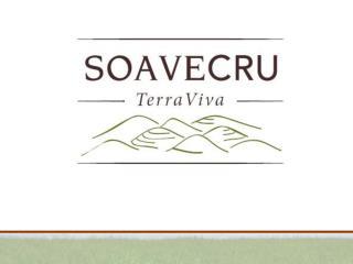 Soavecru è un'associazione autonoma di piccoli produttori che credono nel Soave e nel suo valore.
