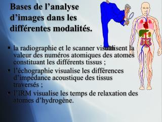 Bases de l'analyse d'images dans les différentes modalités.