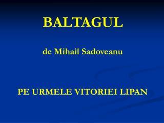 BALTAGUL de Mihail Sadoveanu PE URMELE VITORIEI LIPAN