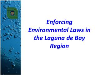 Enforcing Environmental Laws in the Laguna de Bay Region
