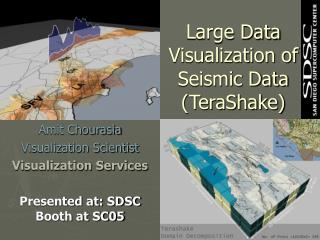 Large Data Visualization of Seismic Data (TeraShake)