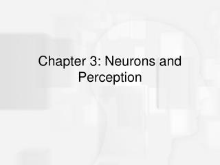 Chapter 3: Neurons and Perception