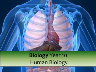 Biology  Year 10  Human Biology