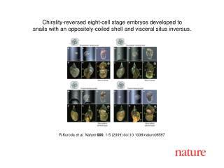 R Kuroda  et al. Nature 000 , 1-5 (2009) doi:10.1038/nature08597