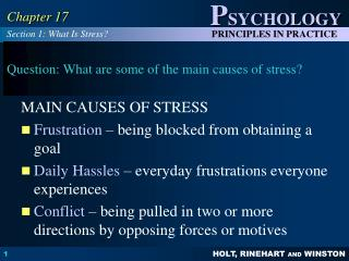 Question: What are some of the main causes of stress?