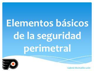 Elementos básicos de la seguridad perimetral