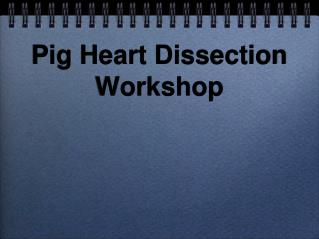 Pig Heart Dissection Workshop
