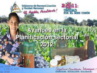 Avances en la Planificación sectorial 2012
