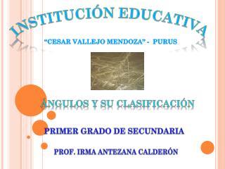 INSTITUCI�N EDUCATIVA