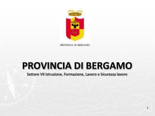 PROVINCIA  DI  BERGAMO Settore VII Istruzione, Formazione, Lavoro e Sicurezza lavoro