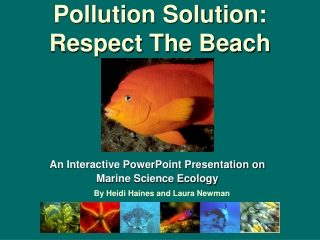 Pollution Solution: Respect The Beach