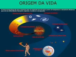 ORIGEM DA VIDA