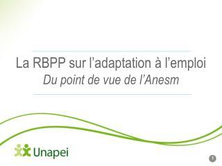 La RBPP sur l'adaptation à l'emploi Du point de vue de l'Anesm