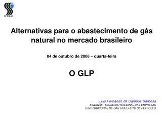 Alternativas para o abastecimento de gás natural no mercado brasileiro