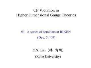 CP Violation in  Higher Dimensional Gauge Theories