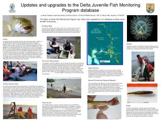 Updates and upgrades to the Delta Juvenile Fish Monitoring Program database