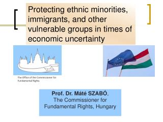 Prof. Dr. M�t� SZAB� ,  T he Commissioner for Fundamental Rights ,  Hungary