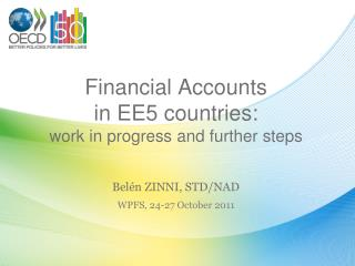 Financial Accounts  in EE5 countries:  work in progress and further steps