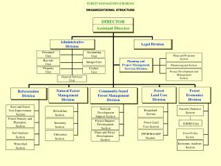 FOREST MANAGEMENT BUREAU ORGANIZATIONAL STRUCTURE