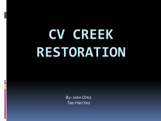 CV Creek Restoration