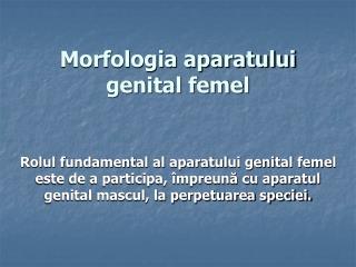 Morfologia aparatului genital femel