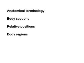 Anatomical terminology Body sections Relative positions Body regions