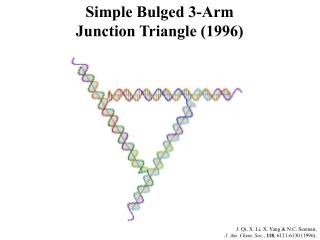 Simple Bulged 3-Arm Junction Triangle (1996)