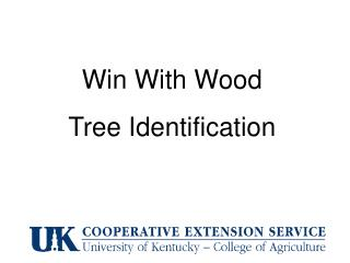 Win With Wood  Tree Identification