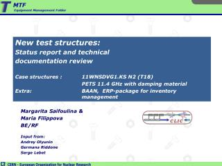New test structures: Status report and technical  documentation review