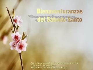 Bienaventuranzas del Sábado Santo