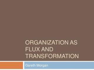 Organization as Flux and Transformation